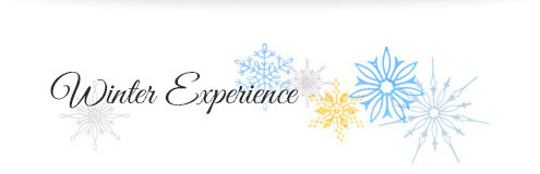 Winter Experience